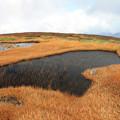 写真: 点在する山岳池塘