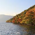 写真: 彩る十和田湖