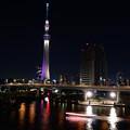 東京の夜物語