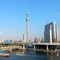 隅田川旅情