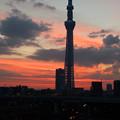 朝焼けの東京