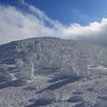 写真: 樹氷群