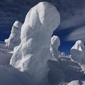 巨大な樹氷