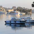 松島朝の静けさ