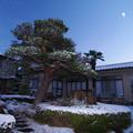 Photos: 小雪舞う朝