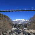 写真: 蔵王に架かる吊橋