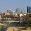 写真: 杜の都は桜の季節