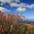Photos: 高原の秋