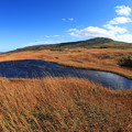 写真: 壮大な草紅葉の月山