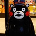 写真: 熊モンに逢いたくて