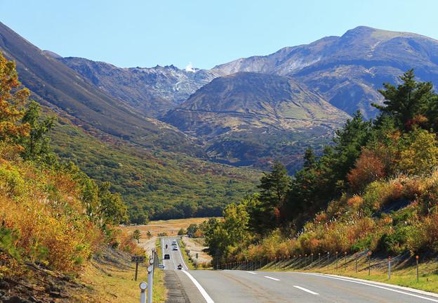 Photos: 高原を行く