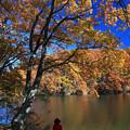 写真: 彩る秋を味わう