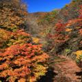 写真: 二口峡谷の紅葉美