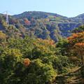 日本一の大吊橋