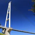 天空の大吊橋