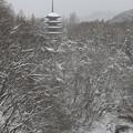 写真: 深山の五重塔