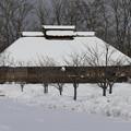 写真: ふるさとは雪国