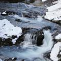 写真: 厳寒の渓流
