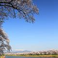 写真: 美しく壮大な夢景観