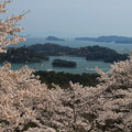 Photos: 美しき日本・松島