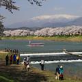 写真: 美しき日本・白石川