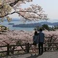 写真: 松島の感動光景