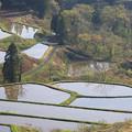 写真: 松代郷の棚田