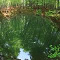 写真: 美人林の池