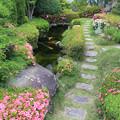 写真: 池の小道