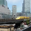 写真: 幸せの黄色い新幹線