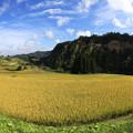 写真: 大蔵村の棚田情景