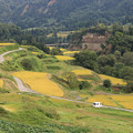 写真: 山里の棚田