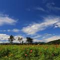 写真: 爽やかな秋の風光
