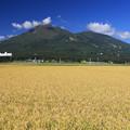 写真: 磐梯山は宝の山よ