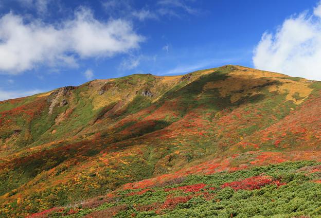 写真: 美しき日本・栗駒山