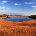 写真: 天空の草紅葉と池塘