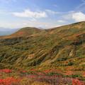 栗駒高原の紅葉