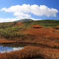 Photos: 月山の秋景観