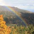 紅葉と虹と・八幡平