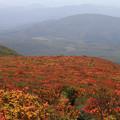 写真: 彩る栗駒山