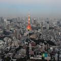 夕暮時の東京タワー