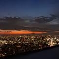夜窓から眺める東京