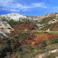 荒々しい山々の紅葉