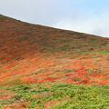 Photos: 紅葉狩りの登山者
