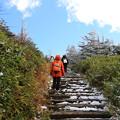 初雪の登山道