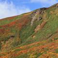 写真: 紅葉美の栗駒山