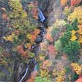 写真: つばくろ谷の紅葉