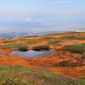 写真: 弥陀ヶ原と庄内平野