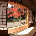Photos: 座敷からの眺め