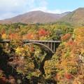 写真: 紅葉美の鳴子峡